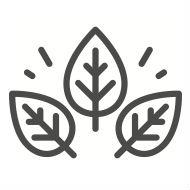 natural vegan dreadlocks products